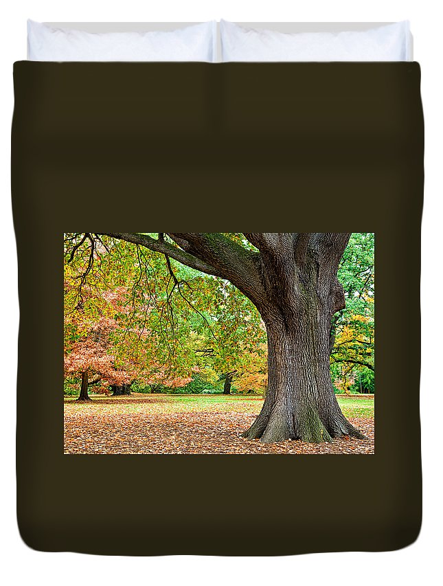 Autumn Duvet Cover featuring the photograph Autumn by Dave Bowman