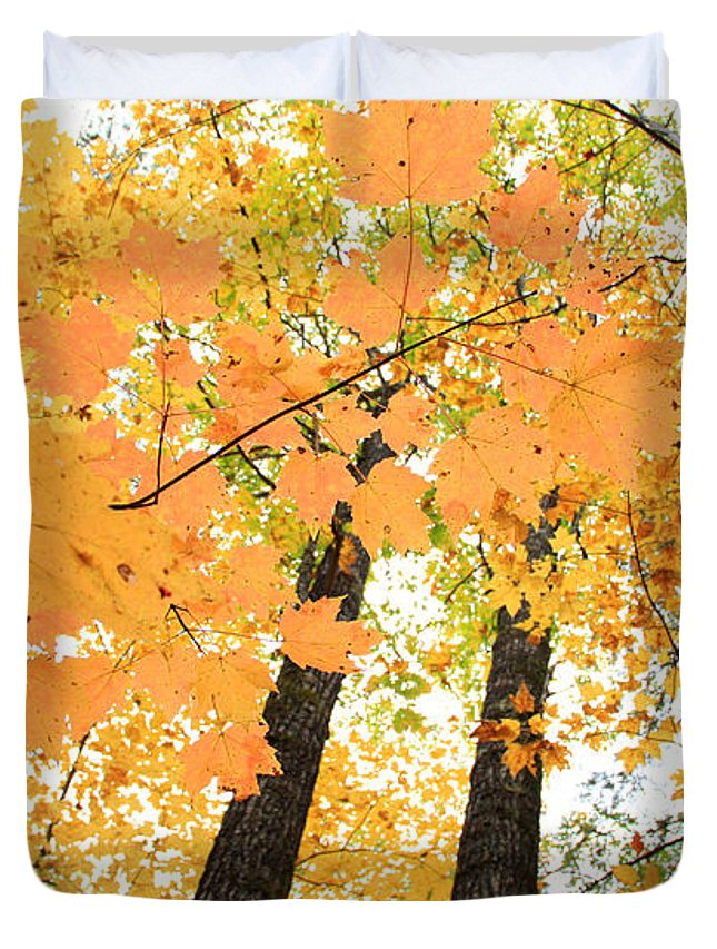 Fall In Nh Duvet Cover featuring the photograph Autumn Days by Michael Mooney