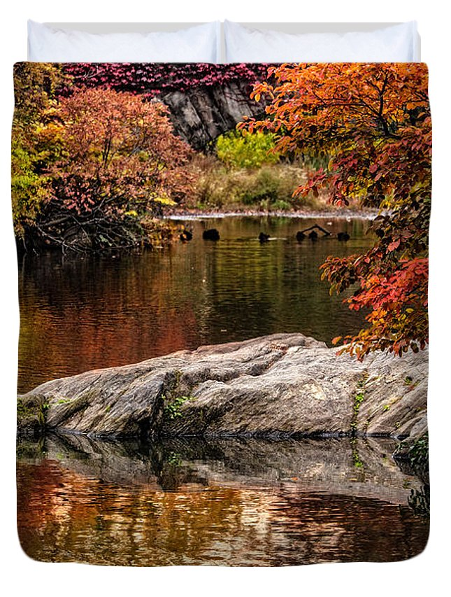 Central Park Duvet Cover featuring the photograph Autumn Duck Couple by Chris Lord