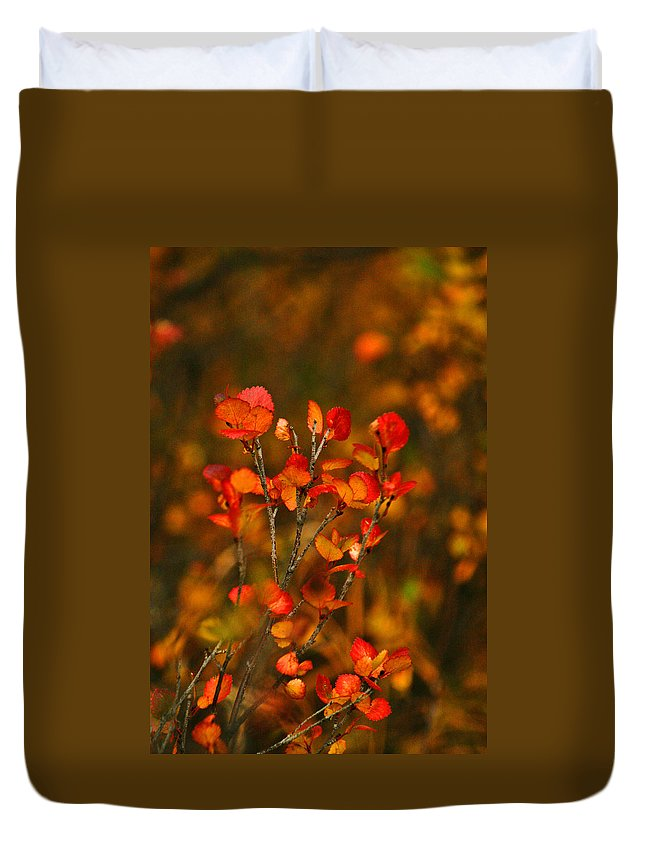 Autumn Duvet Cover featuring the photograph Autumn Emblem by Jeremy Rhoades