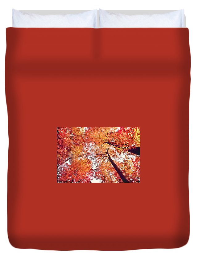 Austria Duvet Cover featuring the photograph Autumn Forest by JR Photography