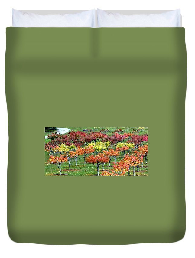 Orchard Duvet Cover featuring the photograph Autumn Hillside Orchard by Will Borden