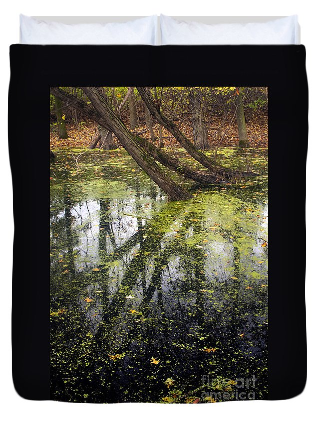 Autumn Duvet Cover featuring the photograph Autumn In Wildwood Park by Paul W Faust - Impressions of Light