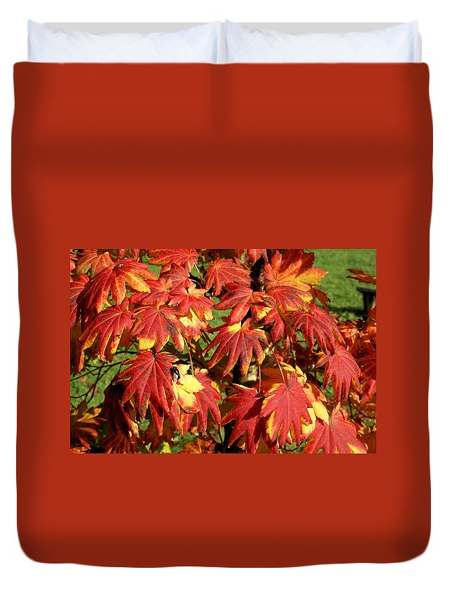 Autumn Duvet Cover featuring the photograph Autumn Leaves 07 by Ron Harpham