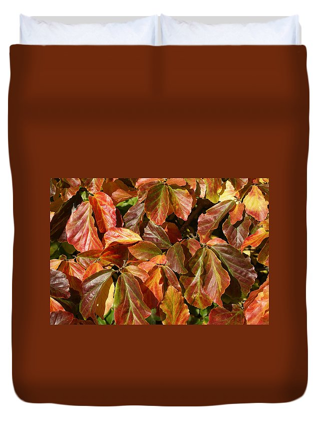 Autumn Duvet Cover featuring the photograph Autumn Leaves 81 by Ron Harpham