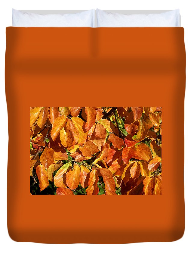 Autumn Duvet Cover featuring the photograph Autumn Leaves 82 by Ron Harpham