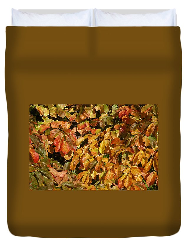 Autumn Duvet Cover featuring the photograph Autumn Leaves 83 by Ron Harpham