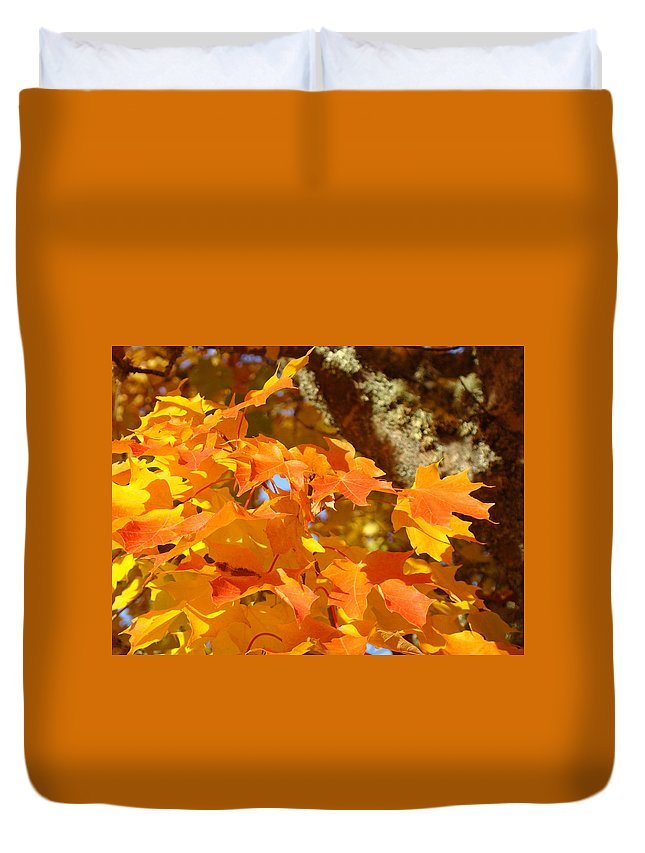 Yellow Duvet Cover featuring the photograph Autumn Leaves Art Print Yellow Orange by Baslee Troutman