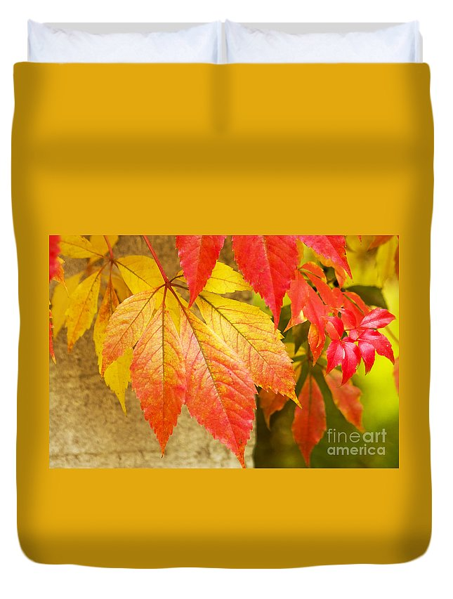 Heiko Duvet Cover featuring the photograph Autumn Leaves by Heiko Koehrer-Wagner