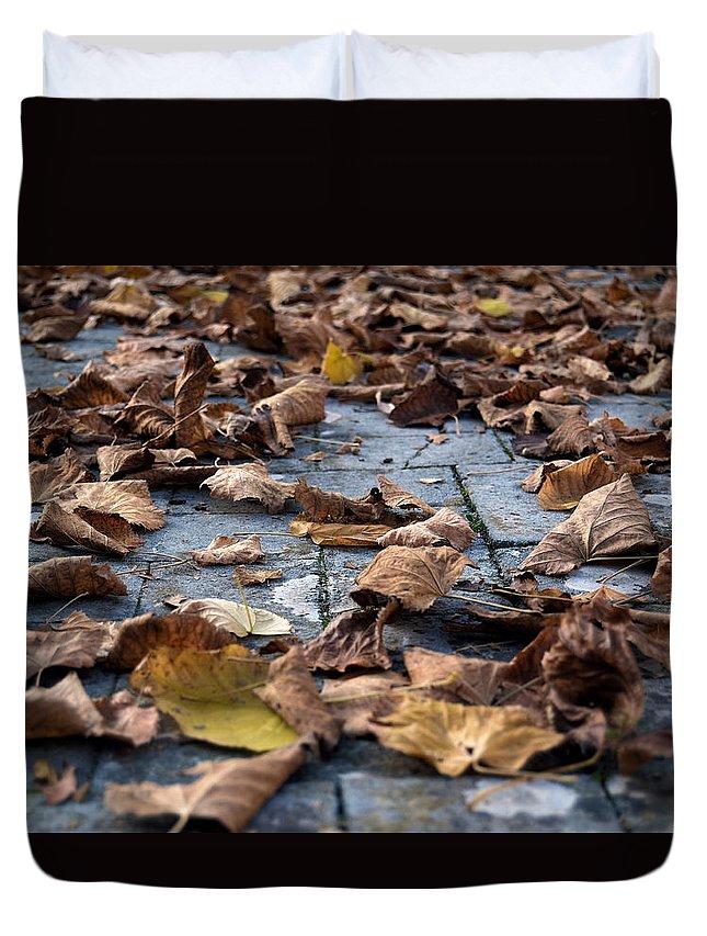 Autumn Duvet Cover featuring the photograph Autumn Leaves by Orazio Puccio