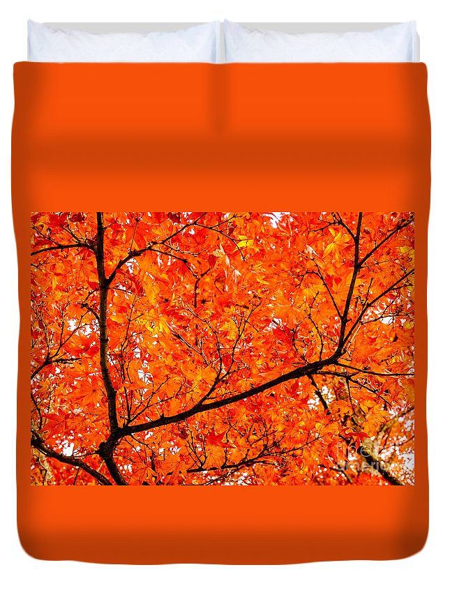 Black Duvet Cover featuring the photograph Glorious Autumn Leaves by Silken Photography
