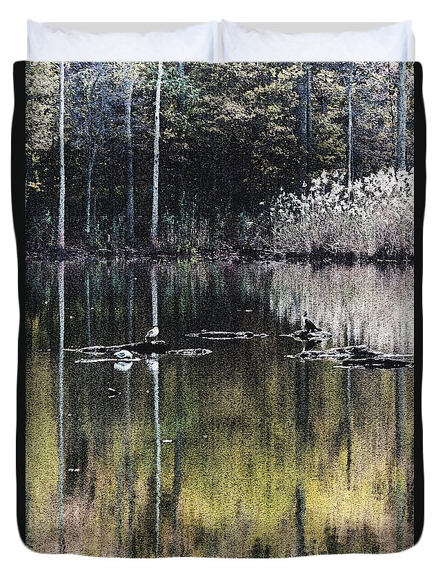 2d Duvet Cover featuring the photograph Autumn Pond by Brian Wallace