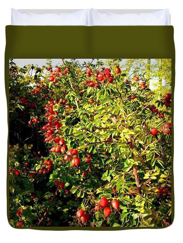 Autumn Splendor 5 Duvet Cover featuring the digital art Autumn Splendor 5 by Will Borden