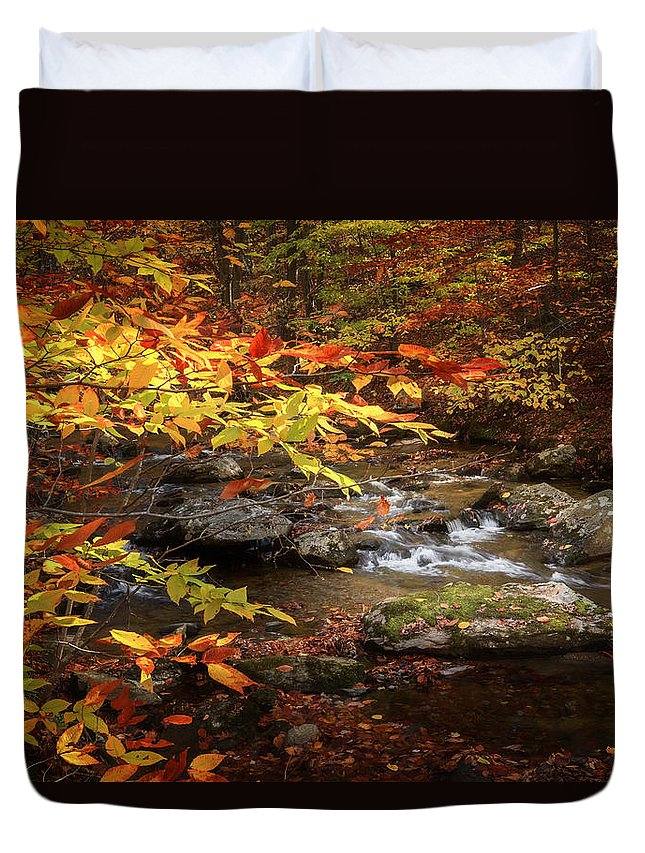 Connecticut Duvet Cover featuring the photograph Autumn Stream by Bill Wakeley