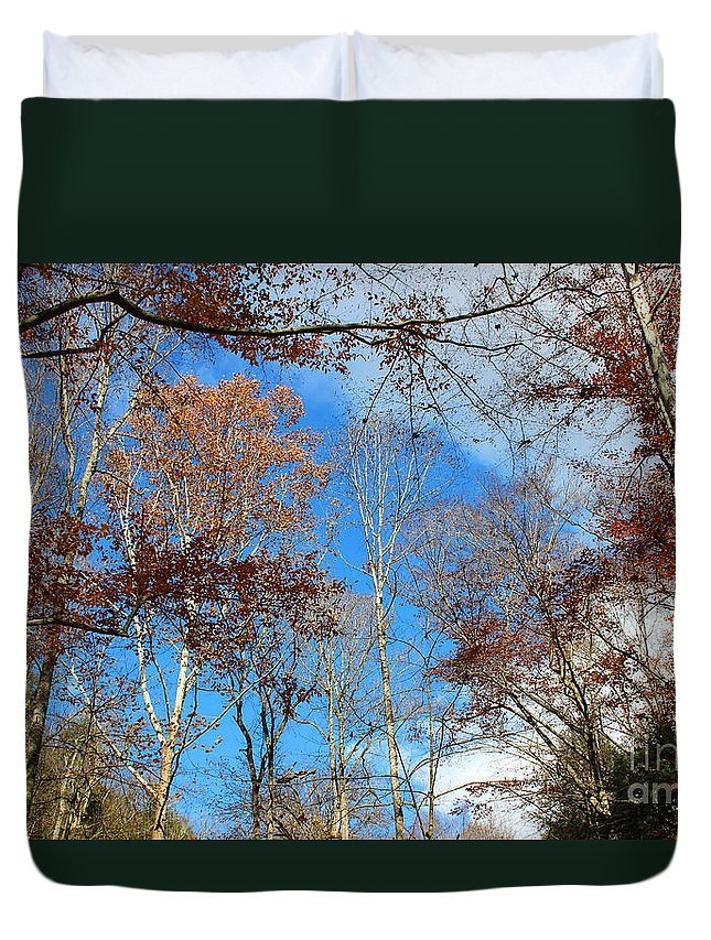 Trees Duvet Cover featuring the photograph Autumn Trees And Heaven by Karen Adams