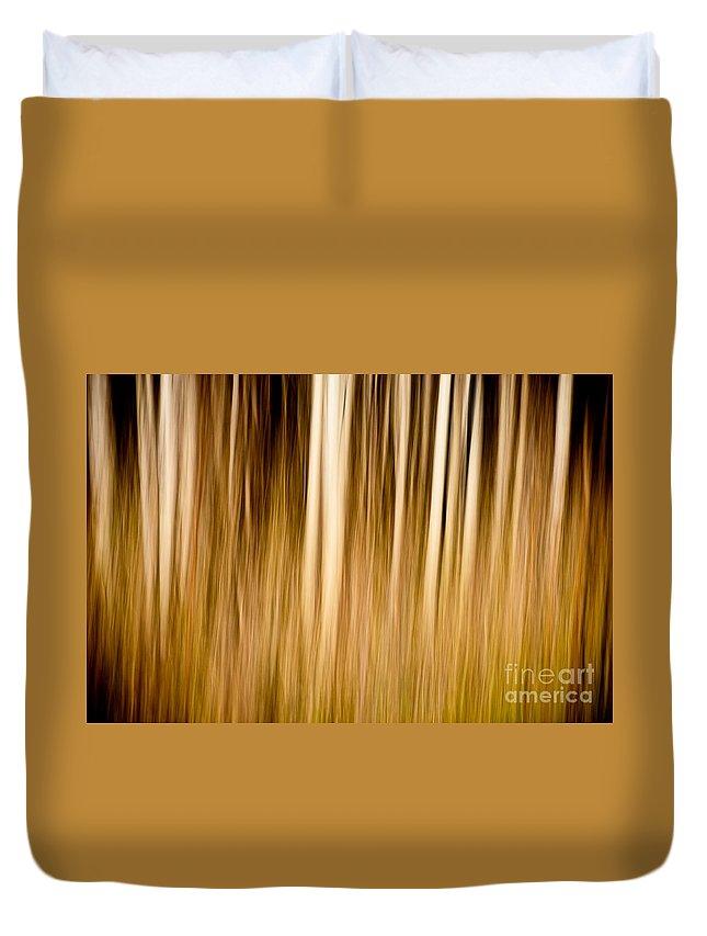 Art Duvet Cover featuring the photograph Autumn's Promise 6 by Joe Mamer