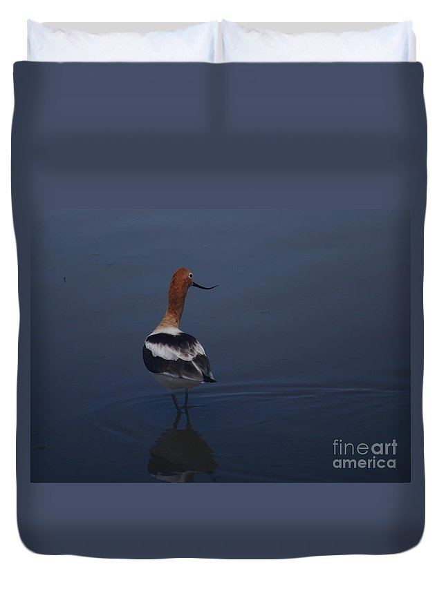 American Avocet Duvet Cover featuring the photograph Avocet Wading by Marty Fancy