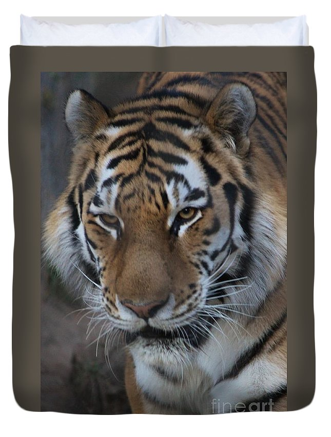 Zoo Duvet Cover featuring the photograph Aware by Tonya Hance