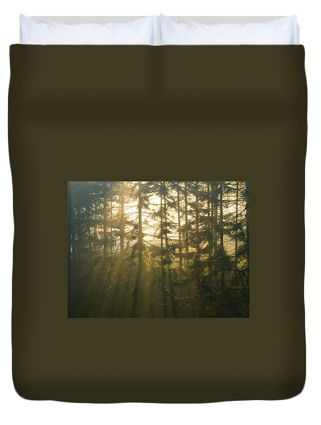 Light Duvet Cover featuring the photograph Awe by Daniel Csoka