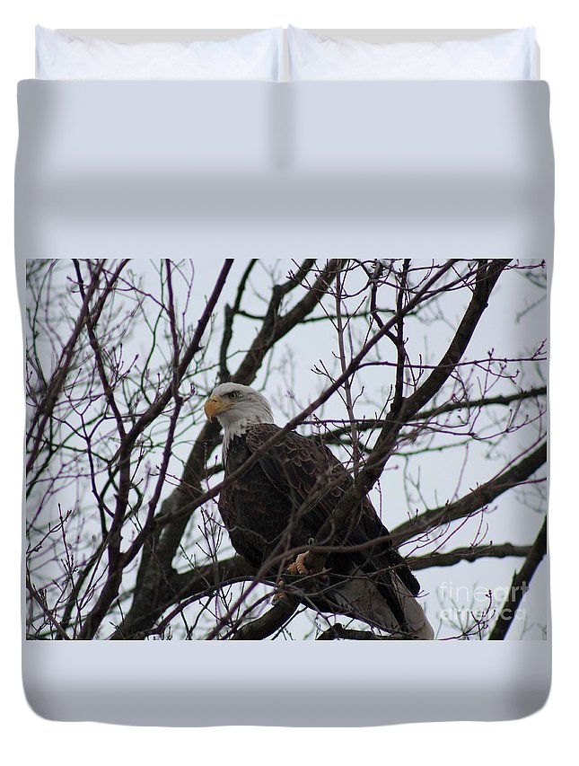 Bald Eagle Duvet Cover featuring the photograph Awesome by Stephanie Kripa