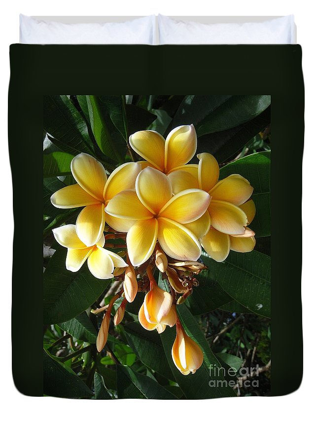 Aztec Gold Duvet Cover featuring the photograph Aztec Gold Plumeria by Mary Deal