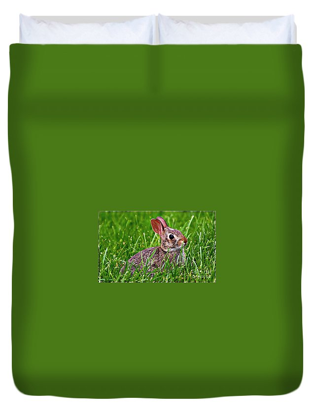 Baby Bunny Duvet Cover featuring the photograph Baby Bunny by Elizabeth Winter