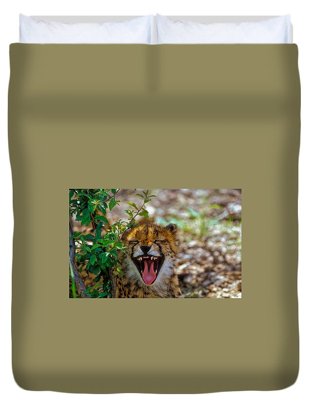 Animals Duvet Cover featuring the photograph Baby Cheetah by Mauro Celotti