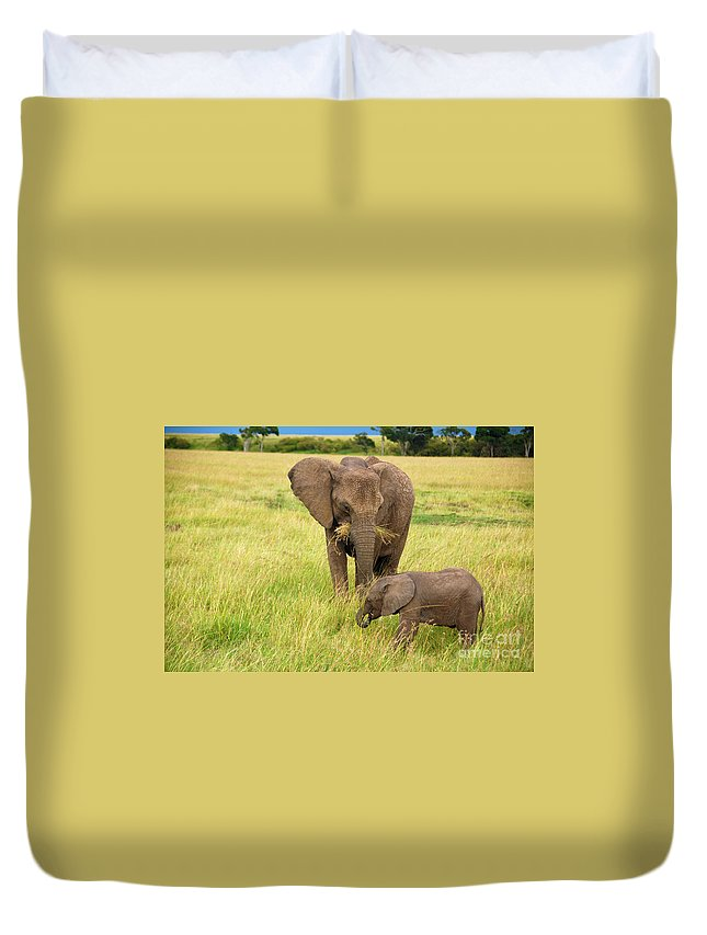 Baby Elephant Duvet Cover featuring the photograph Baby Elephant by Charuhas Images