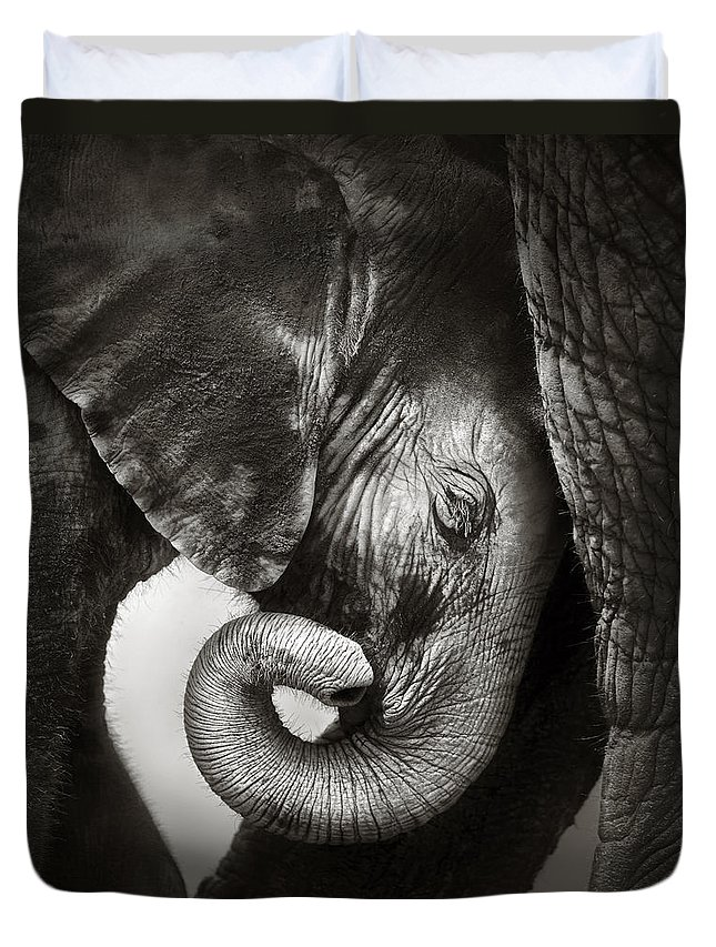 Elephant Duvet Cover featuring the photograph Baby Elephant Seeking Comfort by Johan Swanepoel
