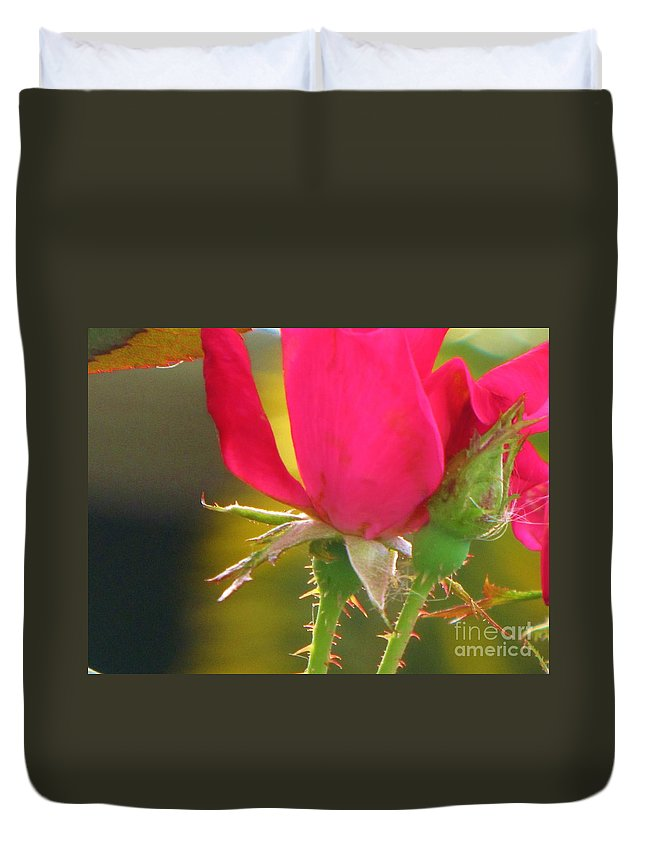 Roses Duvet Cover featuring the photograph Baby Roses by Keri West