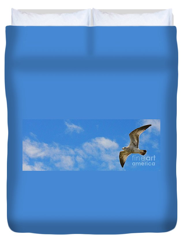 Seagull Duvet Cover featuring the photograph Backlit Seagull by Brenda McGee-Paap