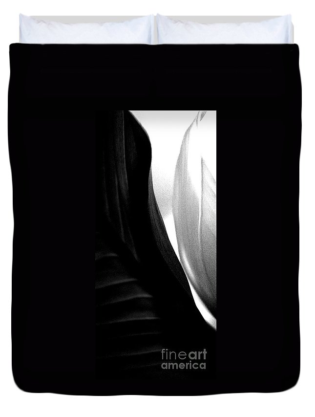 black And White Prints Duvet Cover featuring the photograph Balance by Amanda Barcon