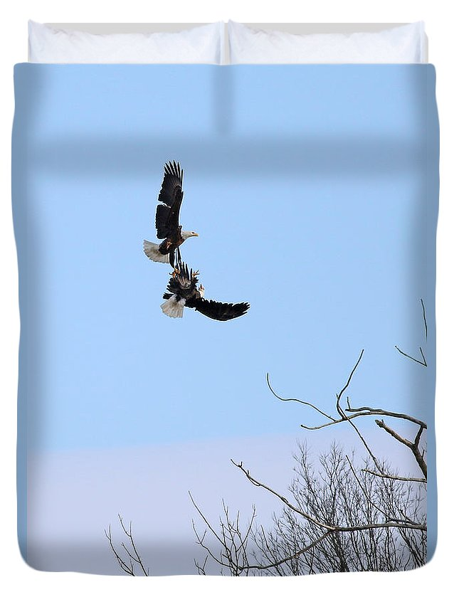 Bald Eagles Duvet Cover featuring the photograph Bald Eagle Courtship Ritual 1330 by Jack Schultz