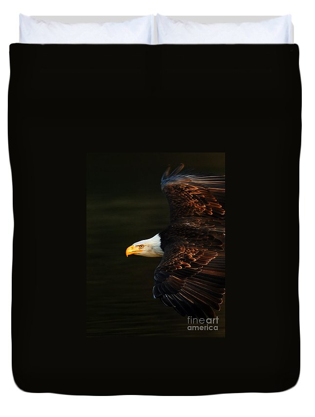 Eagle Duvet Cover featuring the photograph Bald Eagle In Flight by Bob Christopher