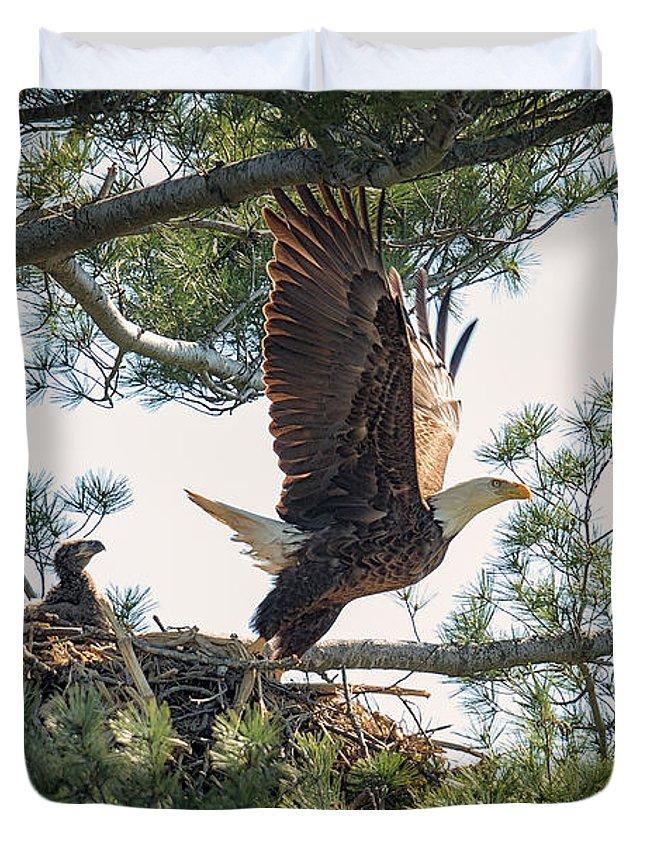 Bald Eagle Duvet Cover featuring the photograph Bald Eagle With Eaglet by Everet Regal