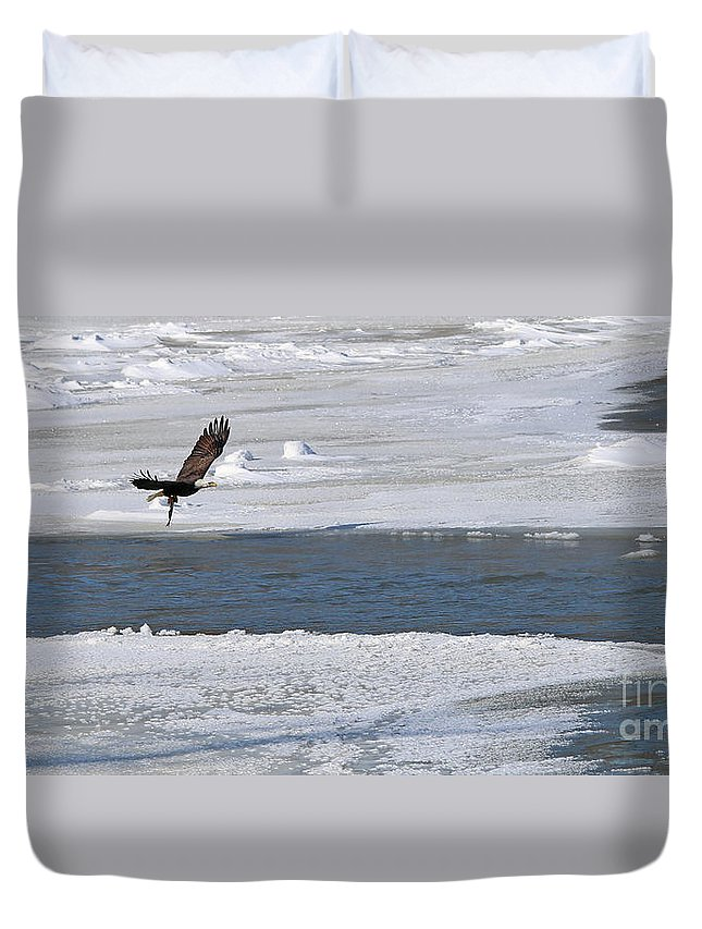 Bald Eagle Duvet Cover featuring the photograph Bald Eagle With Fish 3655 by Jack Schultz