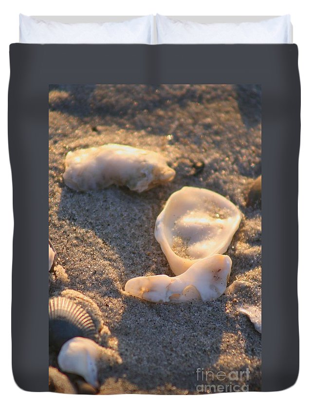 Shells Duvet Cover featuring the photograph Bald Head Island Shells by Nadine Rippelmeyer