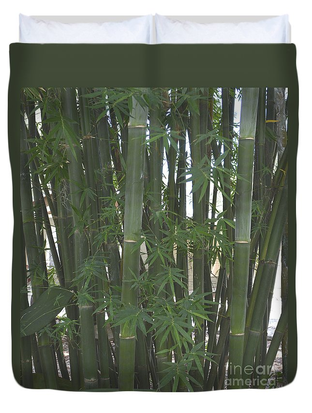 Bamboo Duvet Cover featuring the photograph Bamboo 3 by To-Tam Gerwe