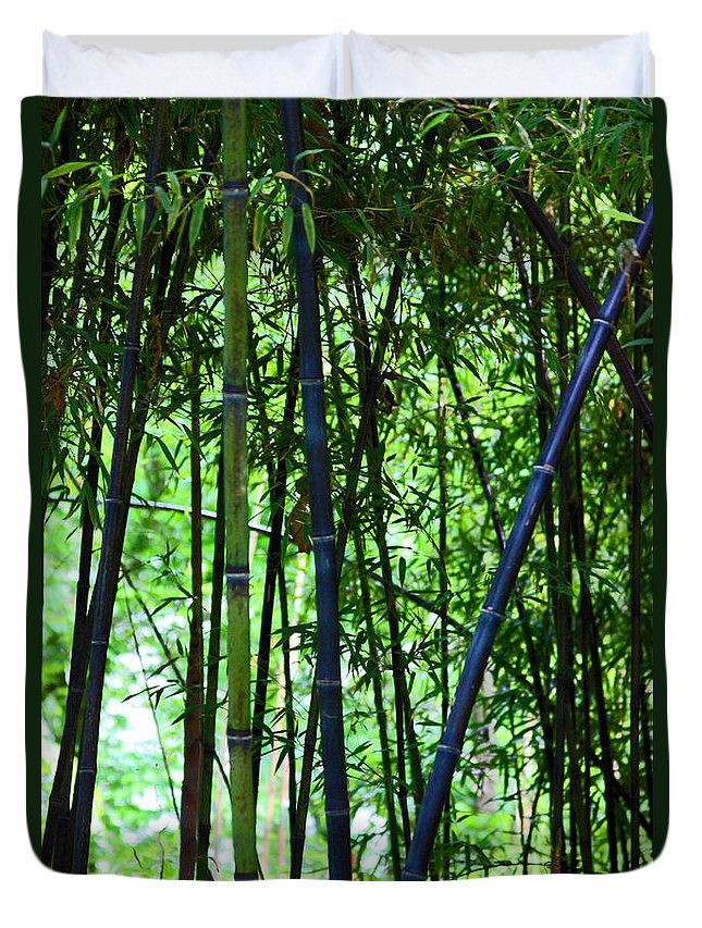 Bamboo Duvet Cover featuring the photograph Bamboo by Carolyn Stagger Cokley