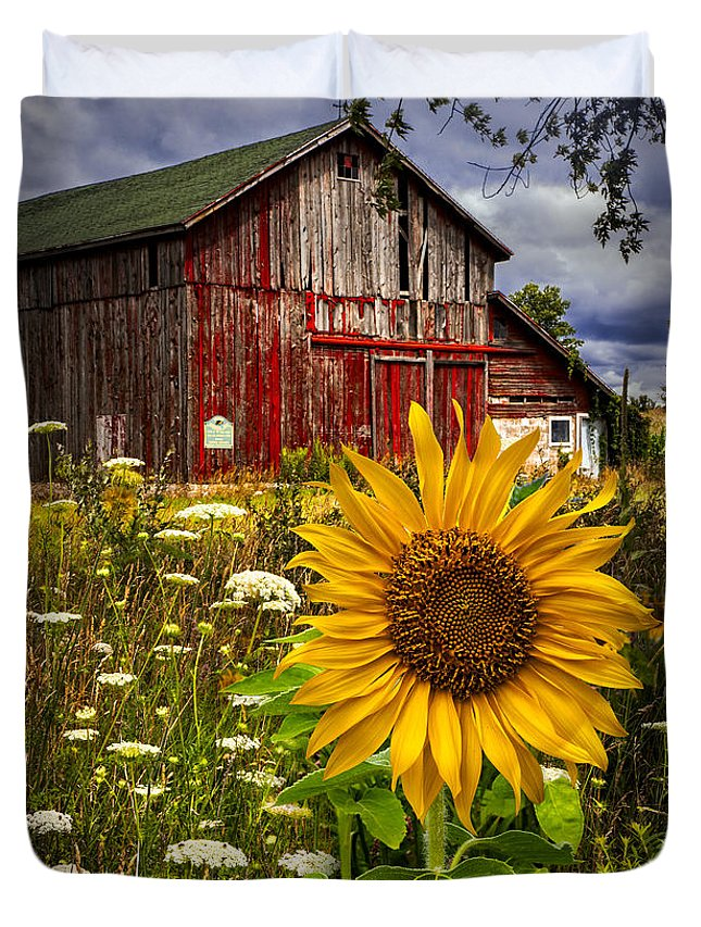 Barn Duvet Cover featuring the photograph Barn Meadow Flowers by Debra and Dave Vanderlaan