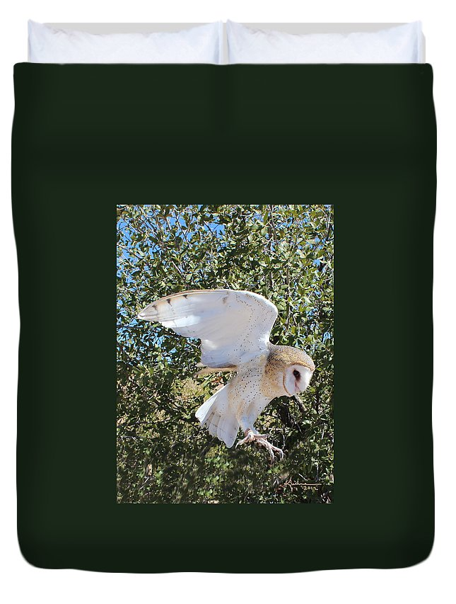 Barn Owl Duvet Cover featuring the photograph Barn Owl 2 by Kume Bryant