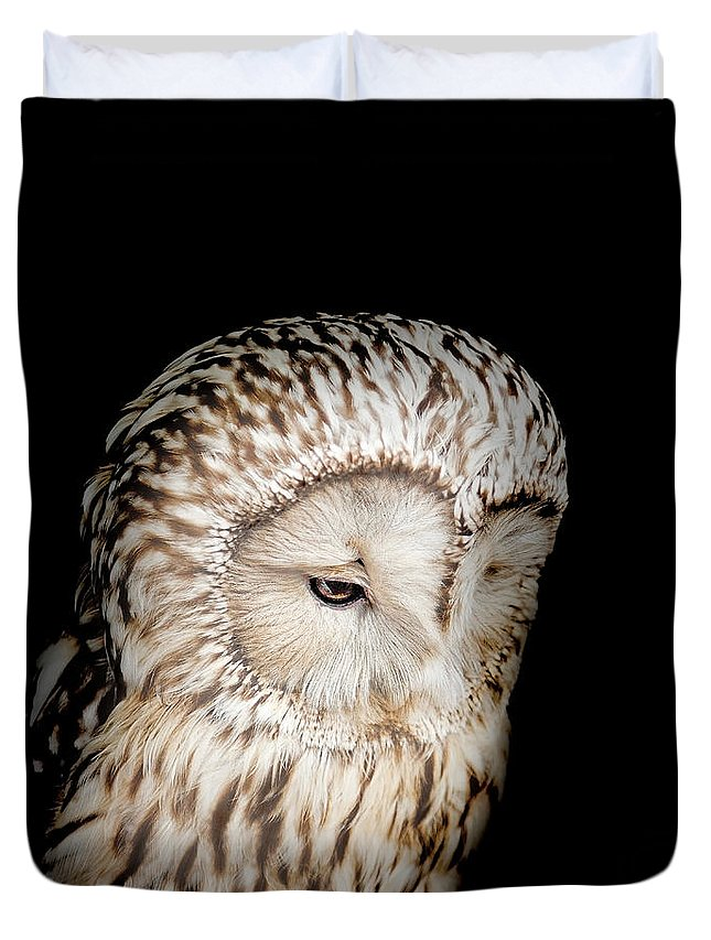 Owl Duvet Cover featuring the photograph Barred Owl by Bill Wakeley