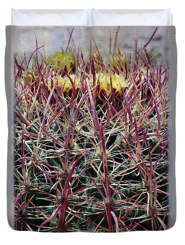 Barrel Cactus Duvet Cover featuring the photograph Barrel Cactus Desert Blooms by Linda Dunn