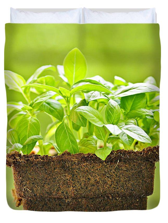 Pot Plant Duvet Covers