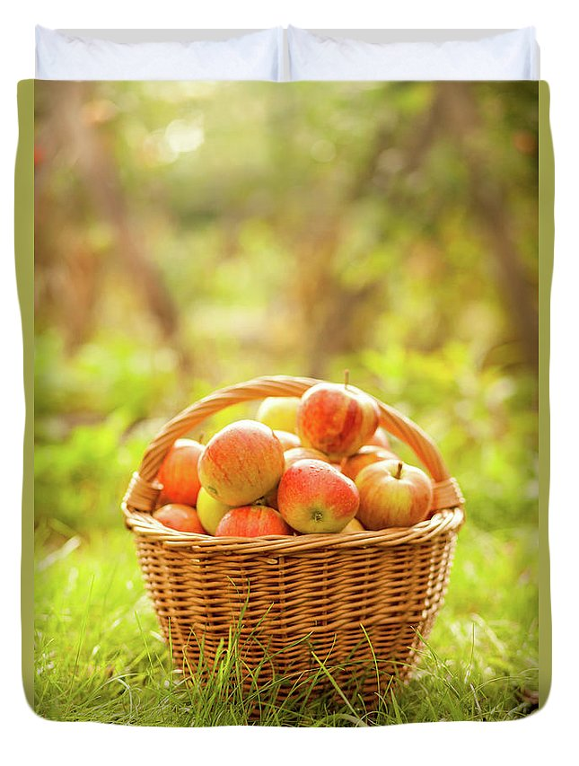 Grass Duvet Cover featuring the photograph Basket With Apples by Tatyana Tomsickova Photography