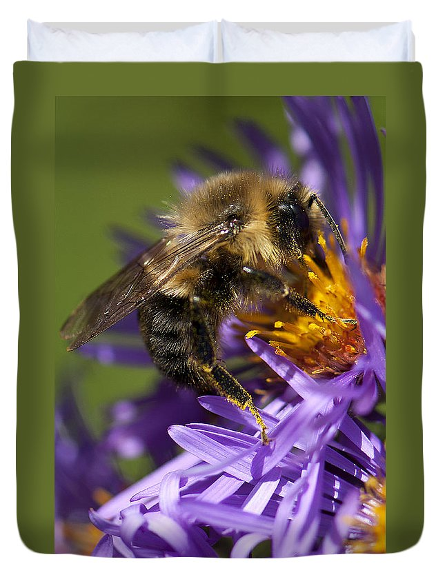 Bee Duvet Cover featuring the photograph Be My Bee... by Les Lorek
