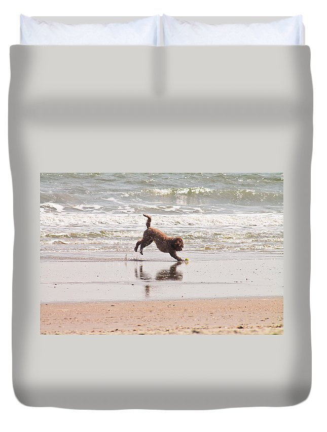 Dog Duvet Cover featuring the photograph Beach Ball by Jessica Brown