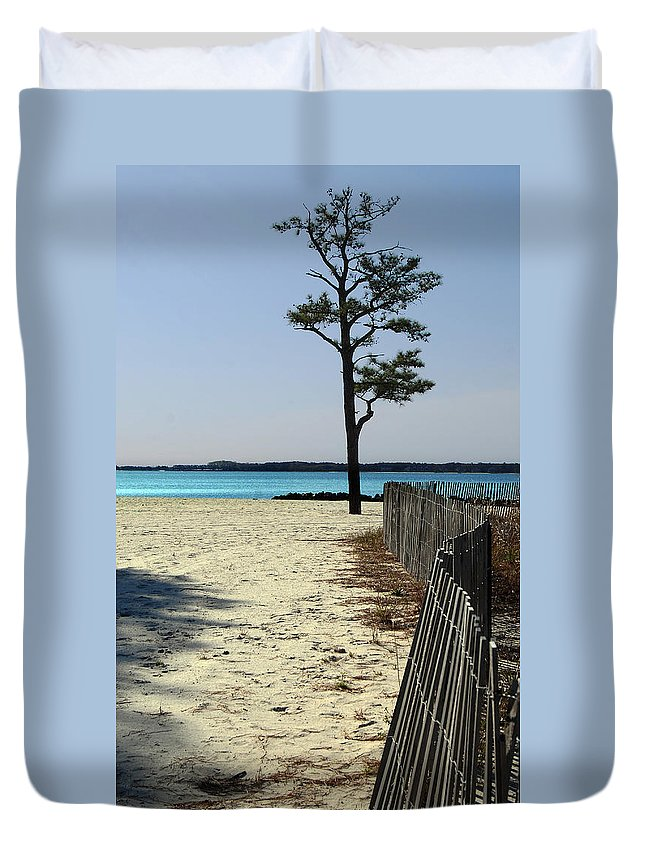 Delaware Duvet Cover featuring the photograph Beach Pine by Skip Willits