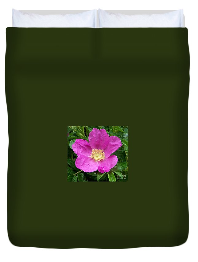 Green Duvet Cover featuring the photograph Pink Beach Rose Fully In Bloom by Eunice Miller