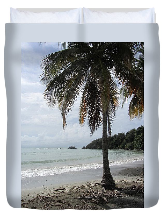 Beach Duvet Cover featuring the photograph Beach With Palm Tree by Anita Burgermeister